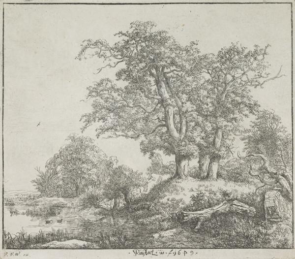 The Three Oaks