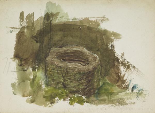Study of a Bird's Nest with Foliage