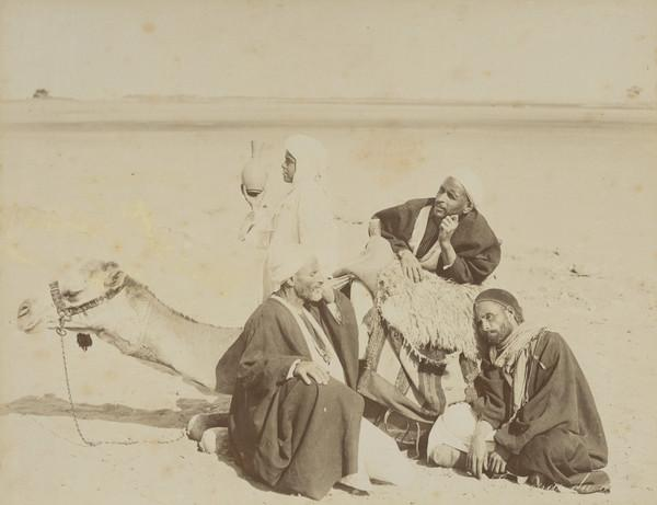 Unknown Group with a Camel