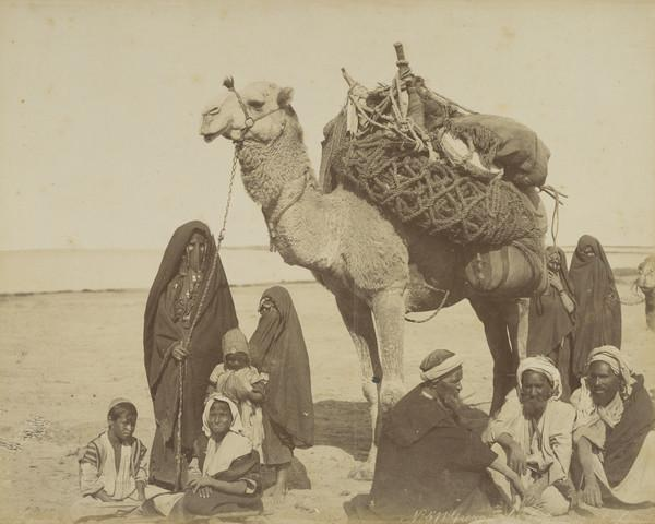 Unknown Egyptian ? Group with a Camel