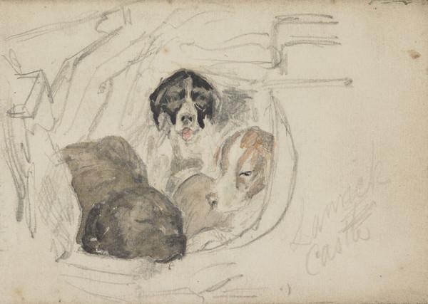 Study of Three Dogs