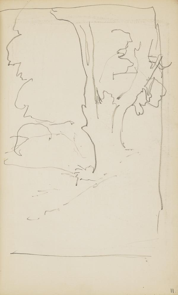 Sketch of a Tree (About 1890s)
