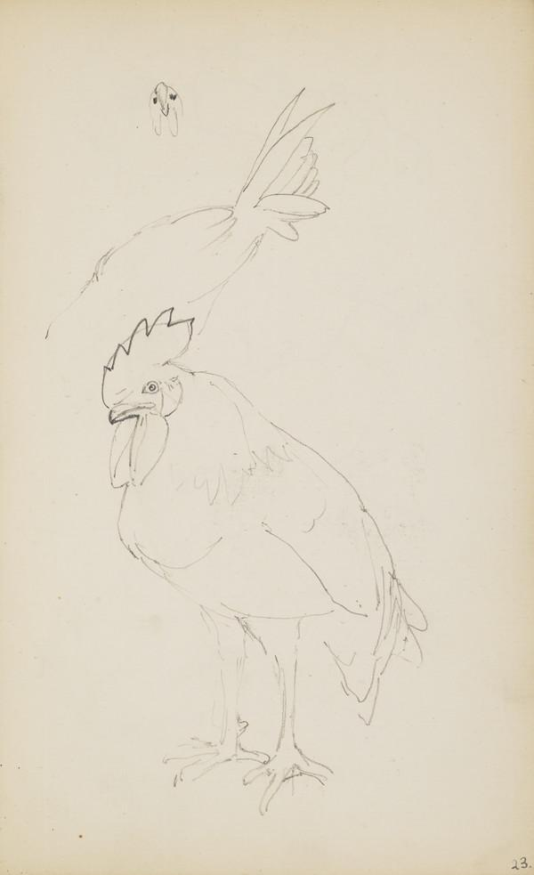 Sketch of a Rooster (Verso: Sketches of Chickens) (About 1890s)