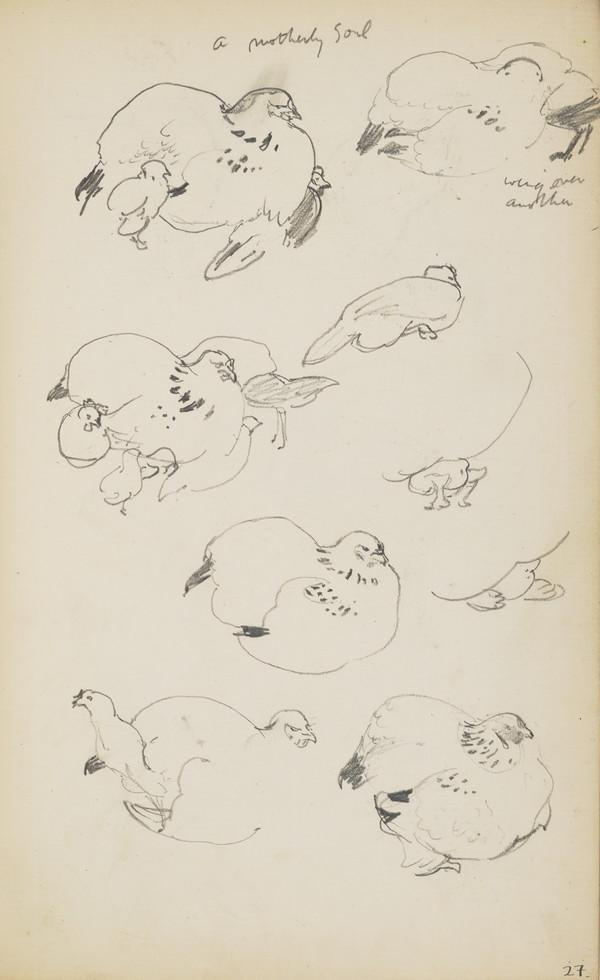 Sheet of Sketches of a Nesting Hen and her Brood (Verso: Sketches of Field Mice) (About 1890s)