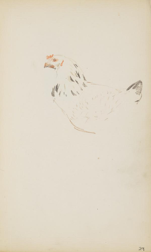 A Rooster (About 1890s)