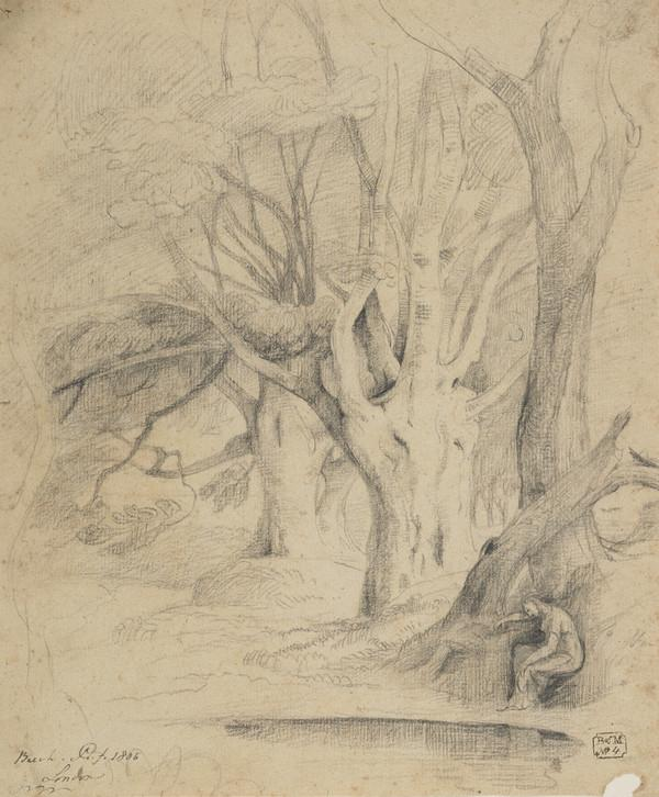 A Beech Trees by a Pond and a Female Figure (Dated 1806)