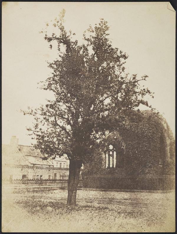 Blackfriars Chapel, St. Andrews [St Andrews 52] (1842 - 1847)