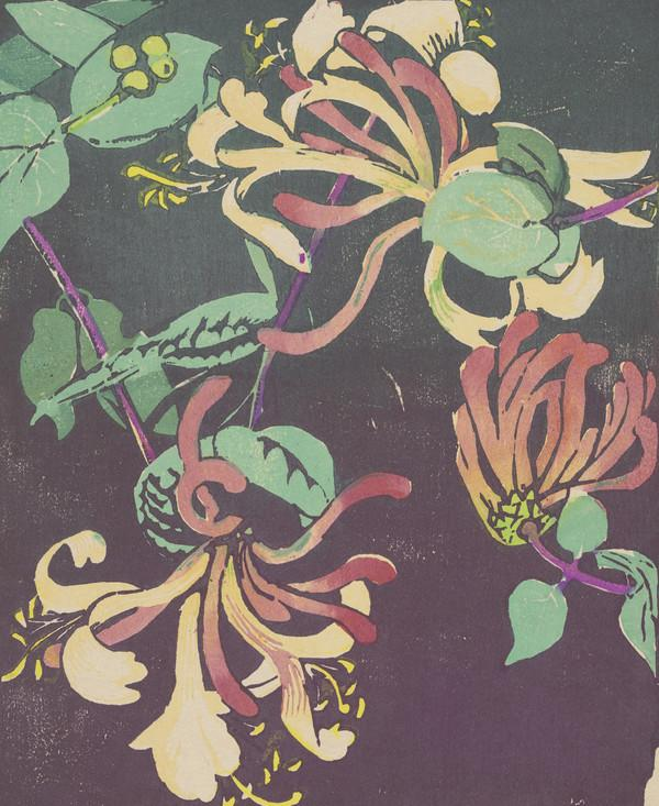 Honeysuckle (About 1936)