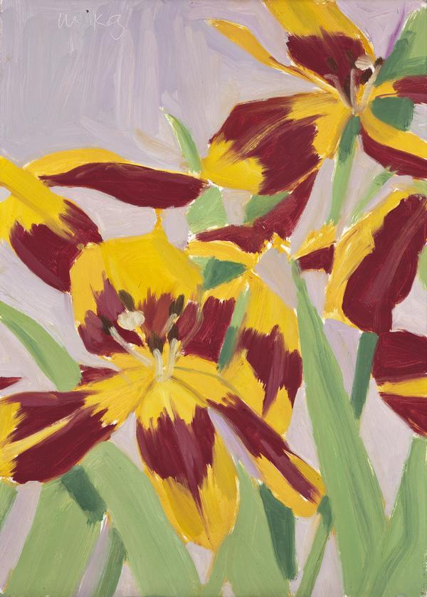 Tulips (1969)