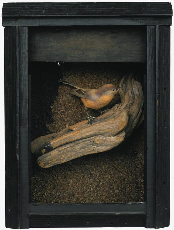 Untitled (Bird Box) (About 1948)