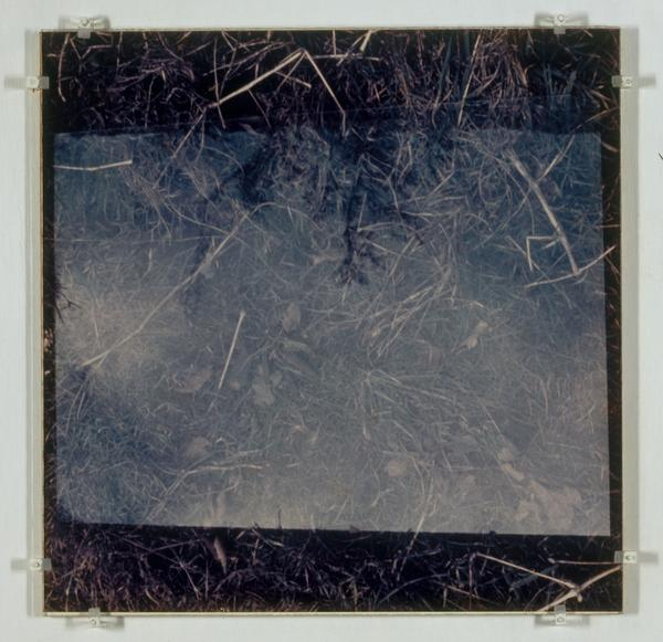 Glass on Glass on Glass on Grass (1969)