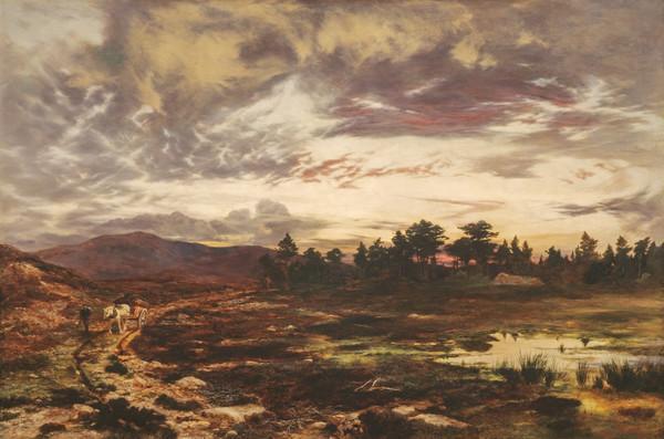 O'er Moor and Moss (1867)