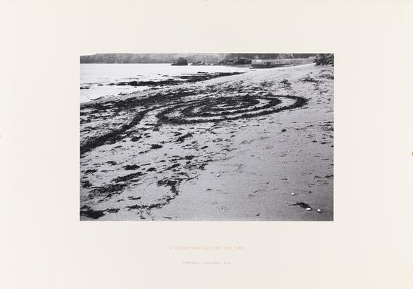 A Sculpture left by the Tide (1970)