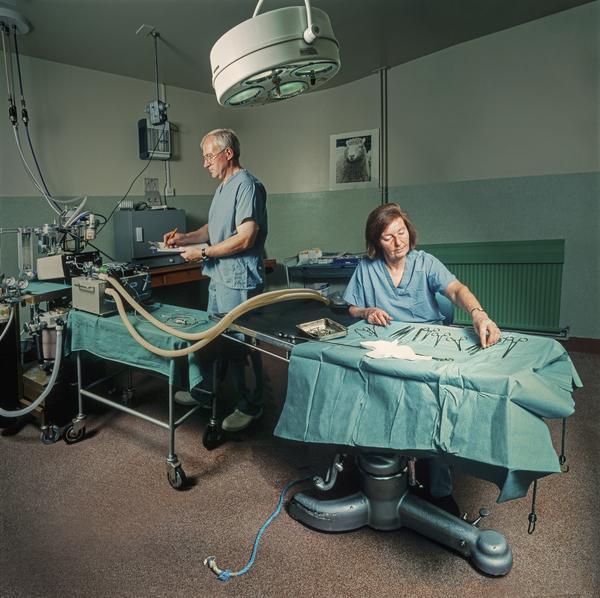 Anaesthetist, John Bracken, and Surgeon, Marjorie Ritchie at The Roslin Institute (2002)