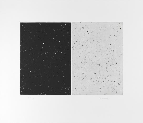 Black and White Diptych (2010)