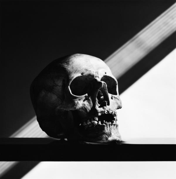 Skull (1988)