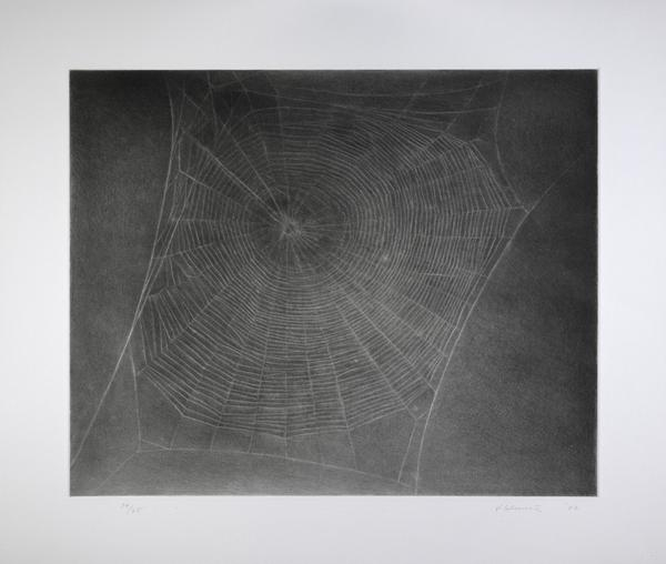 Untitled (Web 4) (2002)