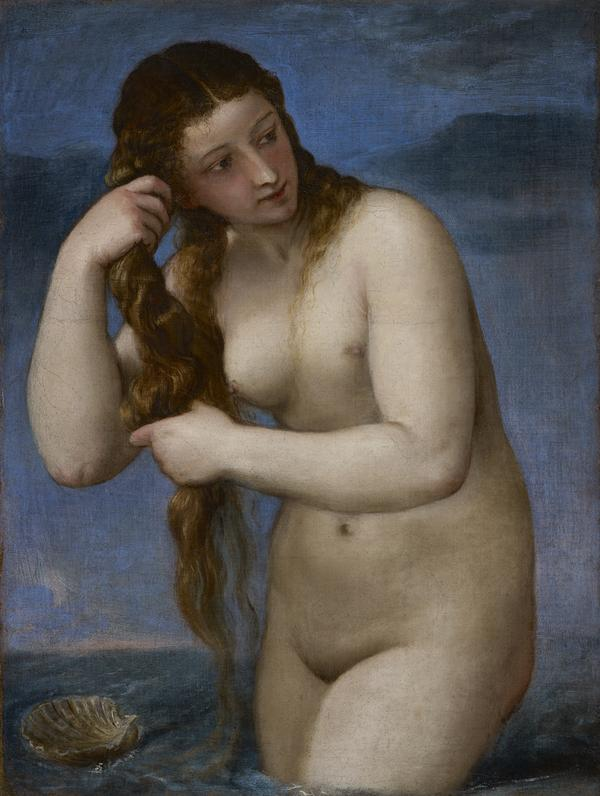 Venus Rising from the Sea ('Venus Anadyomene') (About 1520)