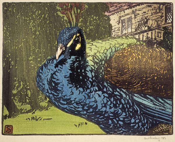 Peacock (1913)