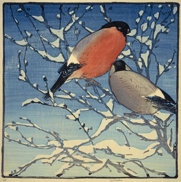 Bullfinches (About 1911)