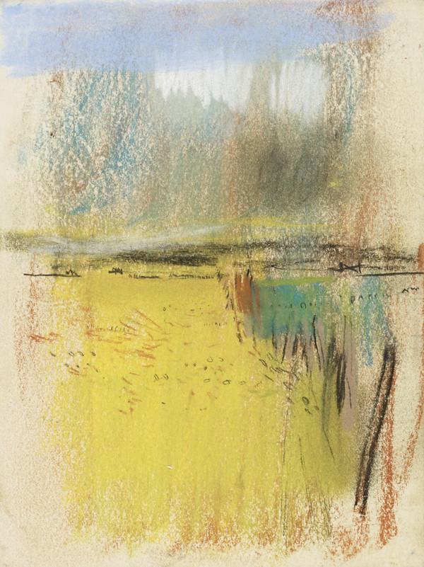 Cornfield and Wide Horizon