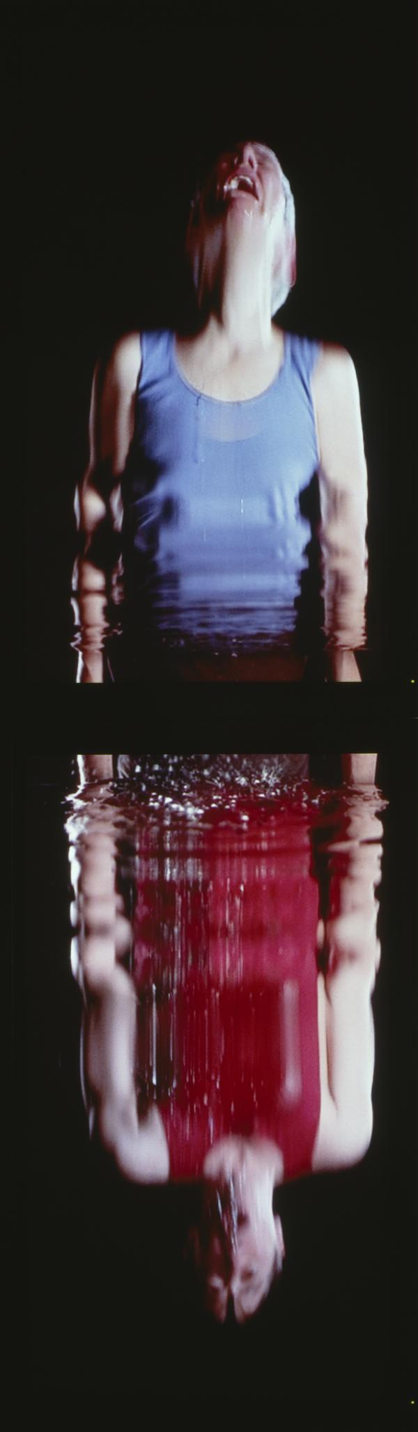 Surrender (2001)