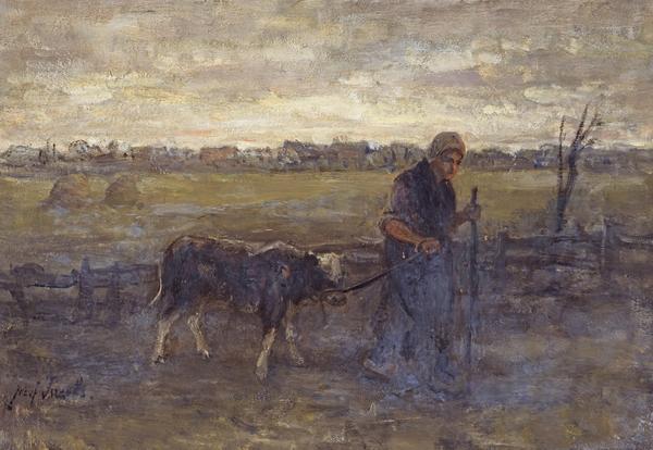 Bringing Home the Calf