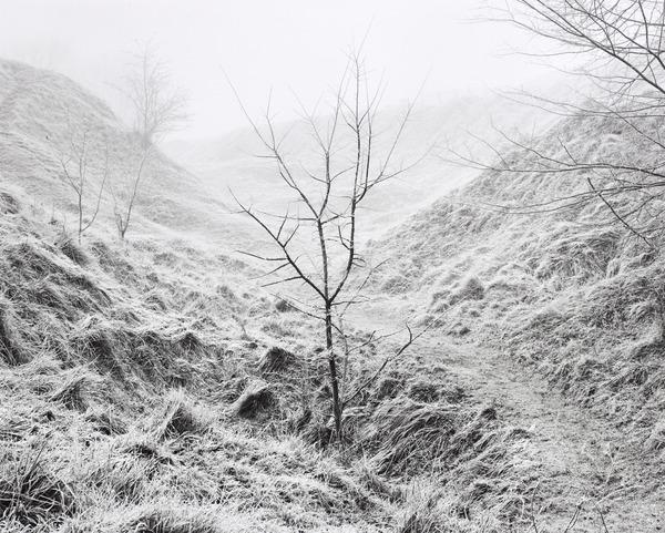 'Y' Ravine, Newfoundland Park, Somme (from the series The Front Line) (2000)