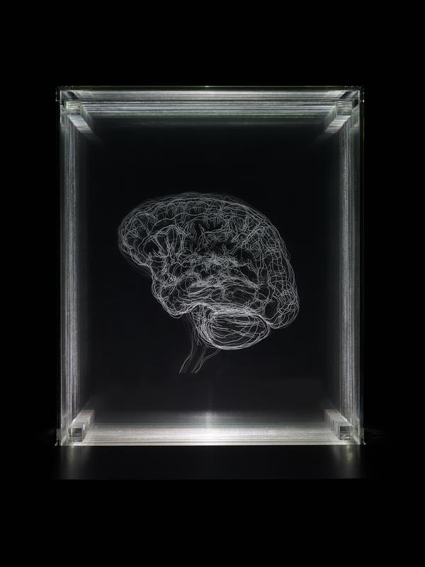 Brain of the Artist (Edition two from a series of five) (2012)