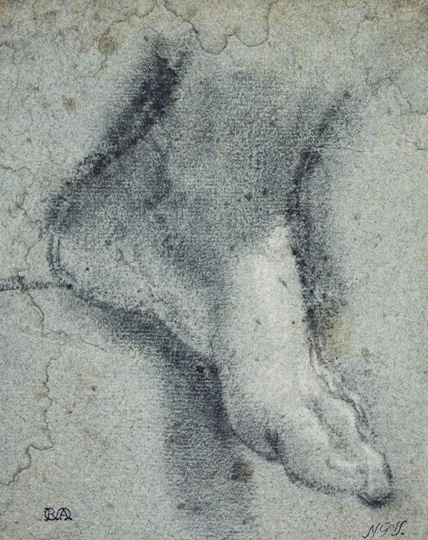 A Left Foot (About 1530)