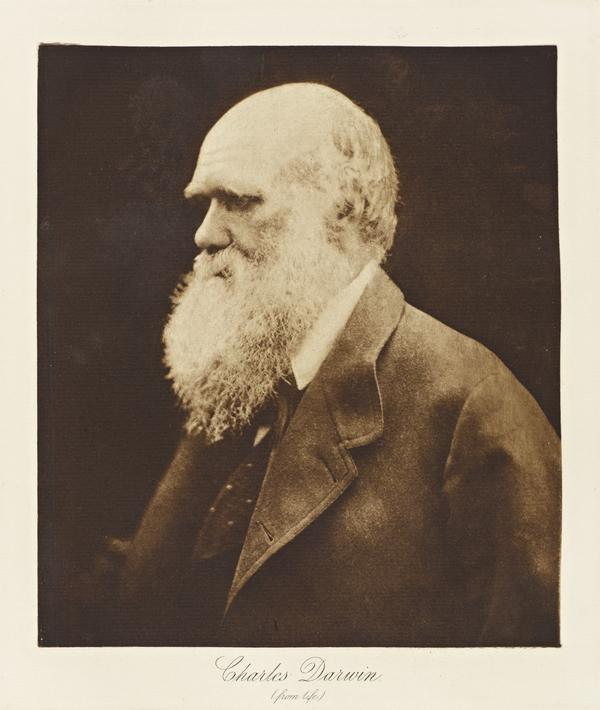Charles Darwin, 1809 - 1882. Naturalist and geologist (1868)
