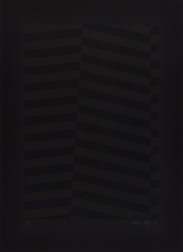 Camouflage Portrait (Black on Black) (2006)