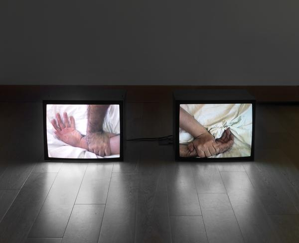 A Divided Self I and II (1996)