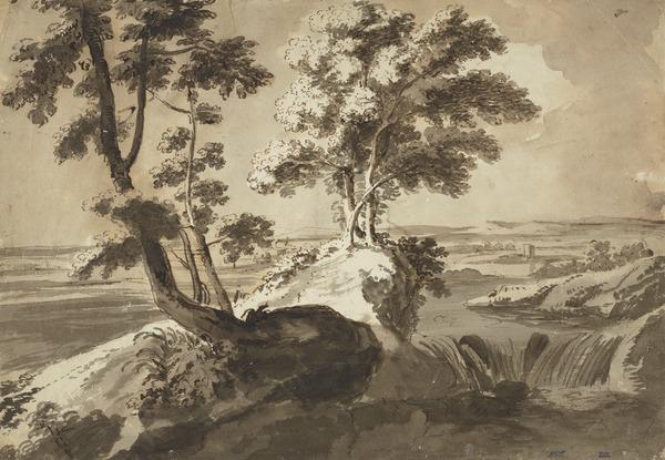 Trees on Rocky Ground near a Waterfall