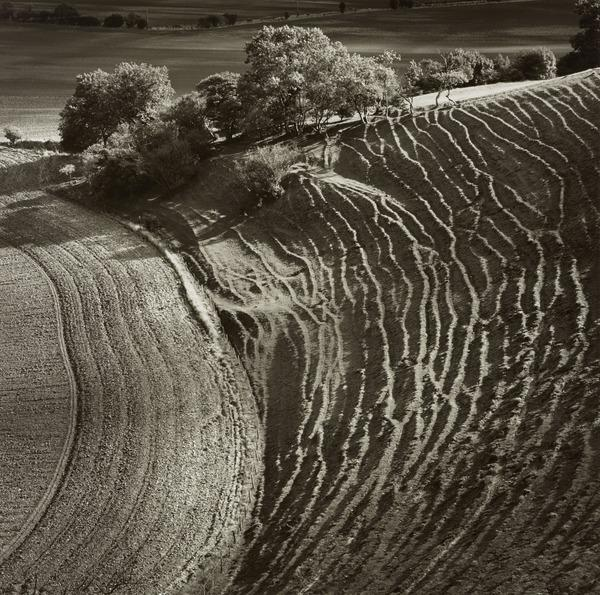 Cley Hill, Wiltshire (1984)