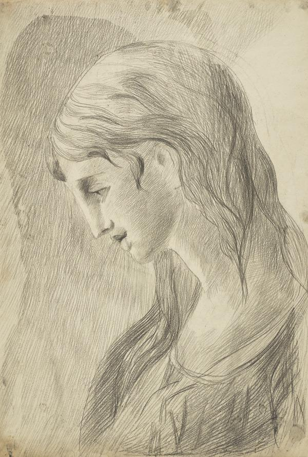 Head of a Woman (1700 - 1799)