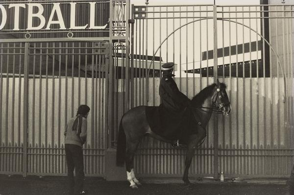 Mounted Policeman looking over Gate at Football Match