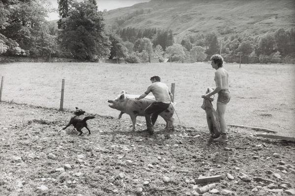 Catching the Sow to Take to the Boar, Fasnagrianach, Loch Broom (1983)