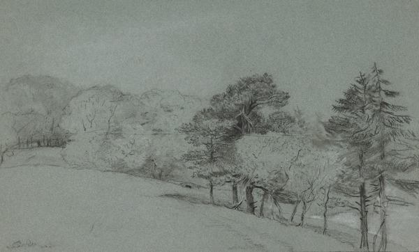 Studies of Trees and Parkland