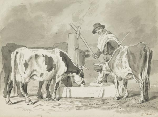Cattle at a Drinking Trough