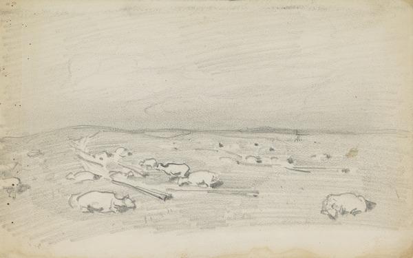 Study of Sheep on Moorland