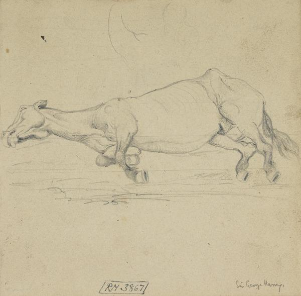 Study of a Horse Lying Down [Verso: Trees]