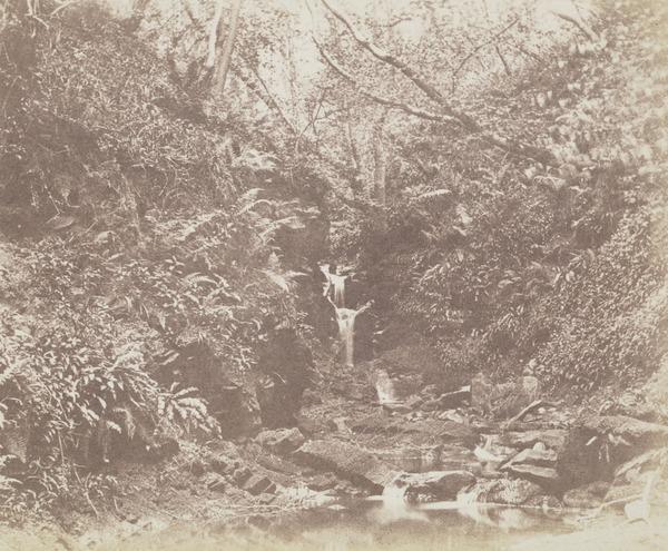 Waterfall in forest, Fairlie Glen