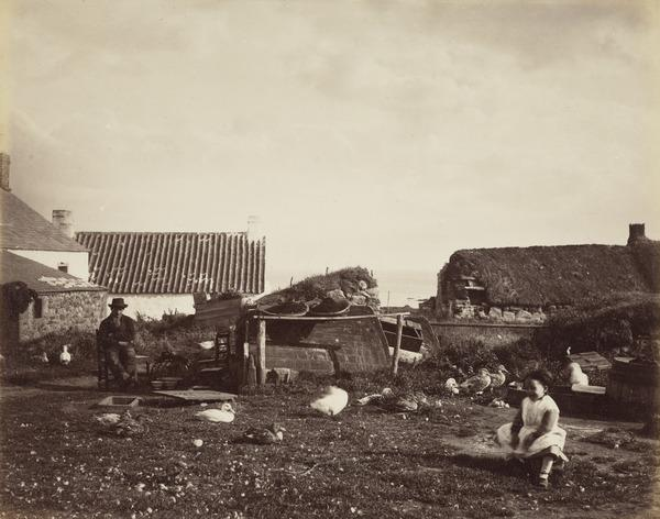 'West Haven Carnoustie 1880'. Behind the cottages, man and child, flock of ducks (1880)