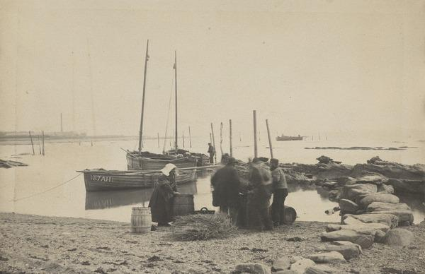 'At West Haven 1881' (1881)