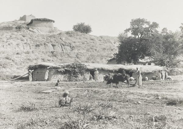 Pastoral Scene, Possibly Sindh (About 1890)