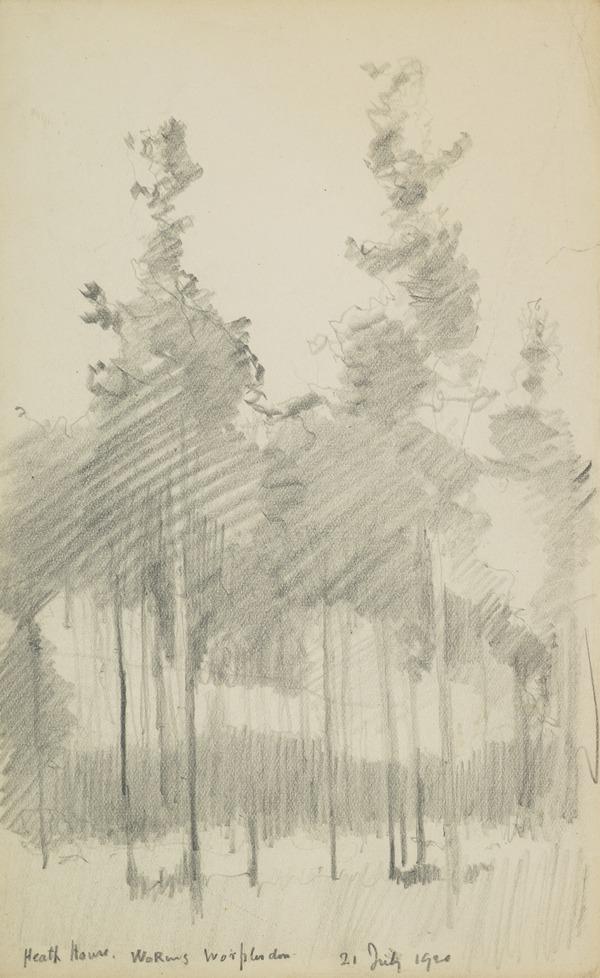 Trees at Heath House (1920)