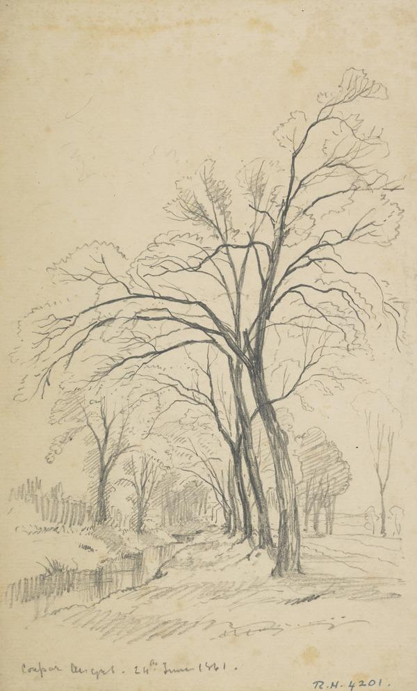 An Avenue at Coupar Angus (Dated 1861)
