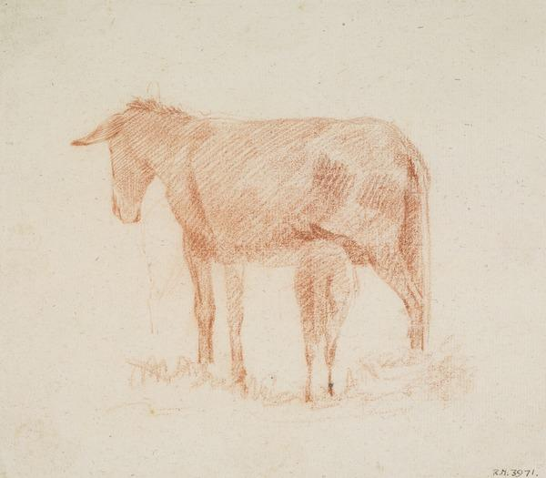 Study of a Donkey and its Foal (About 1787 - 1794)
