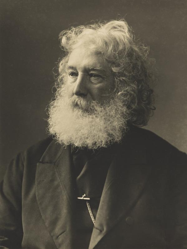 Unknown Man with White Beard